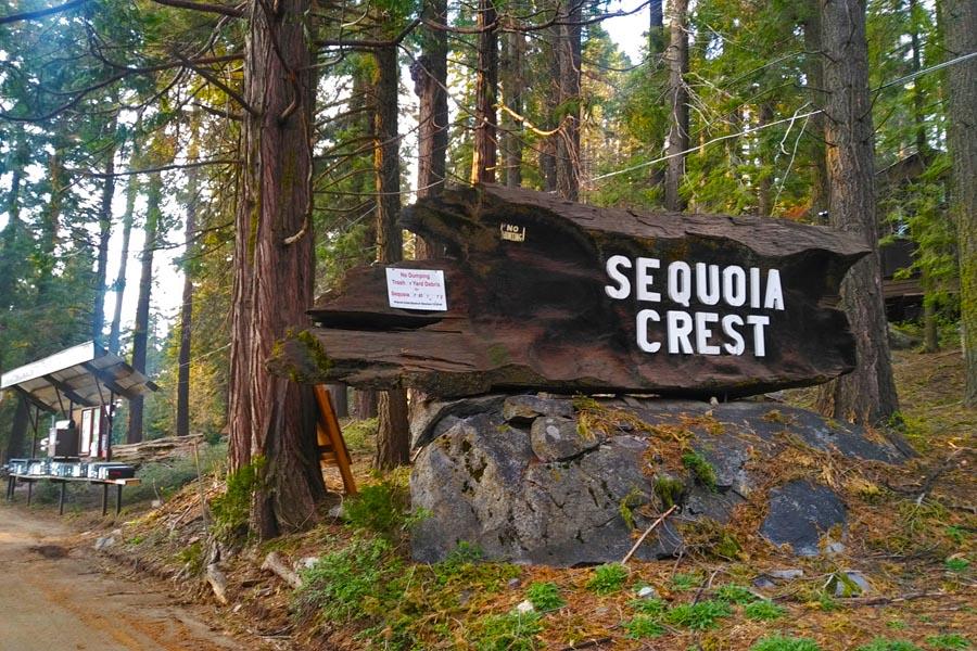 sequoia crest